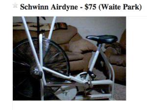 Craigslist Schwinn Airdyne